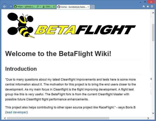 bataflight00.jpg
